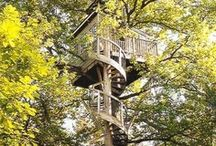 TreeHouses for All Ages / by Linda Deweese-Brown