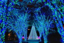 ~garden lights~ / Experience the Garden as never before as it is transformed into a twinkling winter wonderland! / by Atlanta Botanical Garden