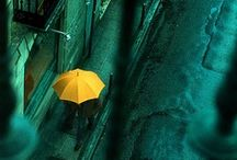Umbrellas / by Sandy Englund