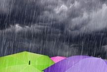 Rain / by Sandy Englund