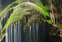 Waterfalls / by Pat Roisman