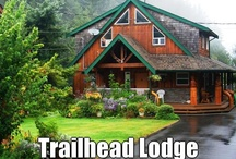 Trailhead Resort / We have built our place over the past 20 years. Our guests come to fish, hike and explore the beautiful wilderness we live in. We provide comfortable lodging when your day is done.  #fishingvactions #sportsfishing #vancouverisland #fishing / by Trailhead Resort & Charters
