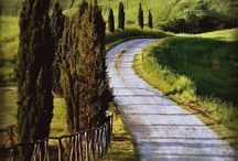Country Roads & Pathways / What pleasure to follow these at a leisurely pace! / by Dan Goodine