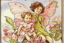 Fairies and Dragons / by Janine Taylor