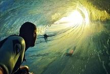 surf / by Jed Webb