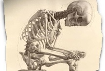 dem bones....art without the skin / by Jed Webb