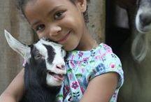 Goat People / by Elva Agin