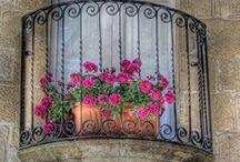 Malta / by Alberta