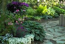 Gardening and Outdoors / by Melissa Brakeman Miyamoto