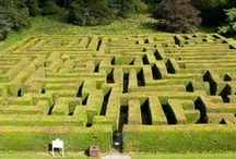 Amazing Mazes / Britain has all sorts of mazes, ranging from lavender mazes to water mazes! You're sure to be a-mazed! / by Love GREAT Britain