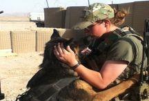 Amigos de guerra... / Los perros no son todo en nuestra vida, pero ellos la hacen completa.  (Roger Caras) / by Rosa Maria