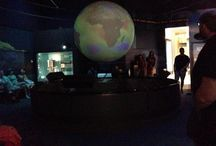 Smithsonian / by Carrie Pillasch