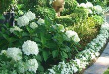 Gardens / by Ellen Hickey