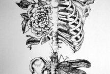 Body Basics / Anatomy and body maps / by Rana Waxman Yoga Therapy