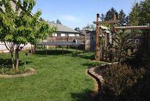 My yard / by David Wilson