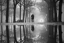 i love black & whites / by Deborah Jones