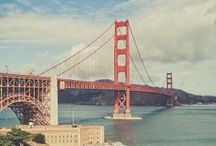 #PacVet2014 / Pacific Veterinary Conference in San Francisco, June 19-22, 2014. For more information: 916.649.0599 | info@pacvet.net | www.pacvet.net. / by CVMA