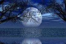 Moonlight / by Carolann Gray