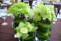Green Wedding Flowers / Follow this board for daily additions of green wedding flowers, green wedding bouquets, wedding boutonnieres, green wedding decor, green wedding flower centerpiece, green wedding flower arrangement, add pic source on comment and we will update it.  My Flower Affair services LA, San Diego, Riverside and OC, CA 714-801-9474 www.myfloweraffair.com / by My Flower Affair