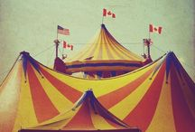 Circus / Anything Circus! Live it every day... Must Love it!  / by Rita Solheim