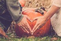 fall wedding / by shannon moyer