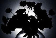 ⋆❋ Black / by Sandra Kim