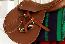 Equestrian / Equestrian inspired decor, clothes and  information / by Jennifer Martin
