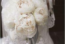 Weddings / by Kim Marie