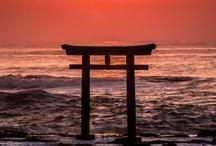 Japan / by Maria Usztyan