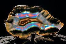 Rocks, Minerals & Gemstones / by Rick Caligiuri