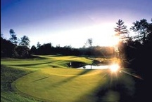 Michigan Golf / For those of us that love golf, Michigan's 850 public golf courses and world-class golf resorts speak our language fluently. Here's a look at what golf in Michigan has to offer players at all levels. / by Pure Michigan