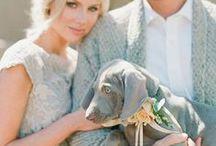 Wedding / by Diana Mieczan