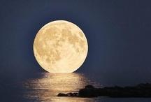 the moon / by Rebecca Colvin