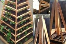Summer Projects / Plenty of home projects from around Pinterest to keep you busy this summer / by Scott McGillivray