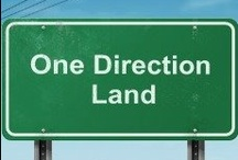 One Direction Land / by Erica S. (tbci)