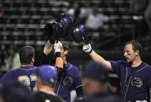 Catamount Baseball / by Western Carolina Catamounts