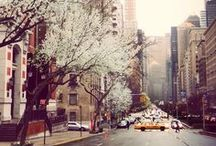 I Left My Heart... in NYC / by Meaghan O'Connor