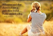 Be Inspired / Whether it's with a woof, a meow or a tweet, our pets inspire us every day. / by Petco