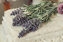 Lavender & Lace / Lavender for luck! / by Linda S