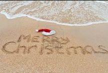 Christmas/ Hanukkah Time / by Megan Goldberg