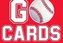 St. Louis Cardinals / The World Champion St. Louis Cardinals!!  / by Jamie Gladden