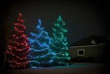 Christmas / by Lindi M