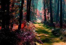 Nature / by Marilou Mangan