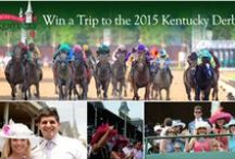 Road to the Kentucky Derby 140 / It ends with the greatest two minutes in sports but the Road to the Kentucky Derby begins long before then. A series of 34 designated races that span across 15 tracks and ends with one champion under the iconic Twins Spires of Churchill Downs. / by Kentucky Derby