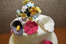 Cake Decorating / by San Jacinto College