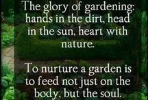 GARDENING / Gardens feed you and heal you, and make you attend to the now. / by Gayle Topping