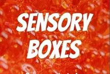 Sensory Diet / by Dawn Ruggles