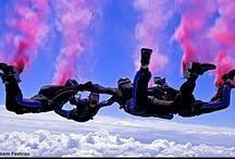 Peeps We Like / by Skydive Midwest