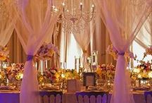 Decor, Linens and Lighting / Decor, Linens and Lighting / by Dream Weddings PA