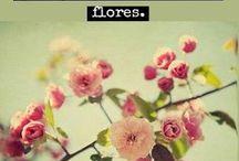 ♥ Frases pra inspirar 1 / by Cris Caldas